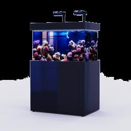 Black Reef 320 (full)
