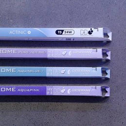 D-D Giesemann Actinic+/Actinic Blue 39 W
